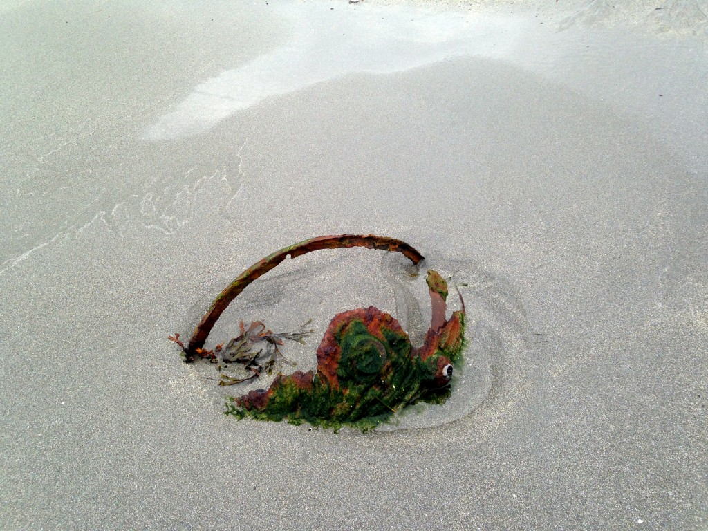 beachwalker, sandfjorden