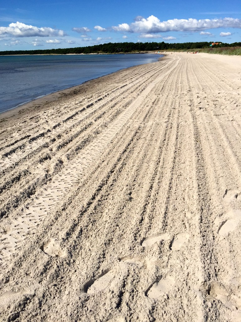 It doesn't get any better beachwalking conditions than this. A vehicle from Paradise transfers the sand into yellow cotton.